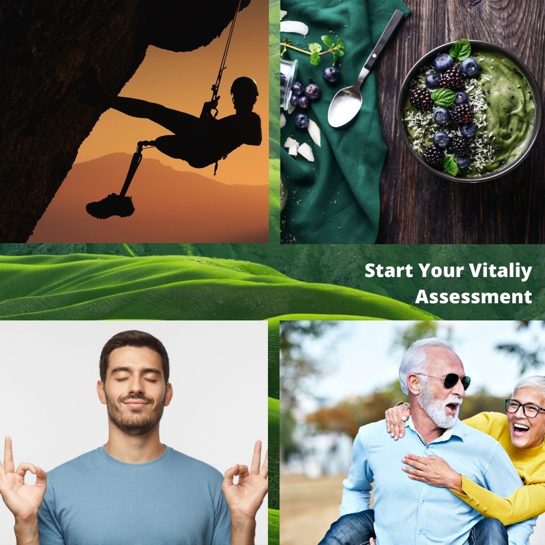 Vitality Assessment to overcome overwhelm and increaese vigor and grit